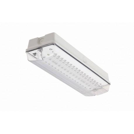 5W LED Bulkhead LED Maintained 5w