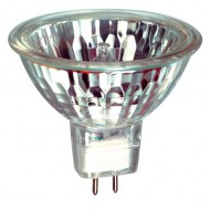 Halogen / 12V  20W MR11 10DEG SPOT